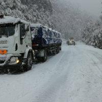Recolección y transporte de residuos terrestres #1 | Grupo Quimiguay
