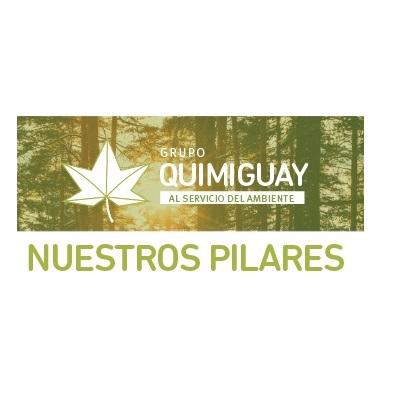 Los 4 pilares del Grupo Quimiguay