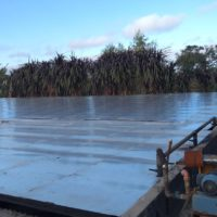 Tratamientos de residuos peligrosos y saneamiento: Planta de tratamiento de efluentes #2 | Grupo Quimiguay